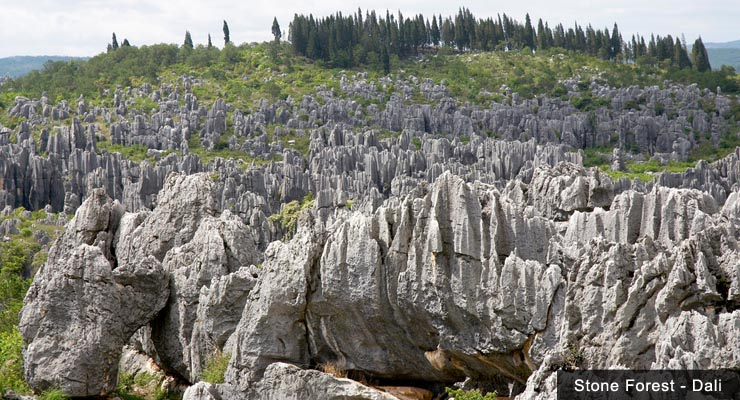 bizarre-rock-formations-at-the-shilin-stone-forest